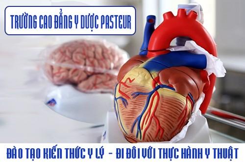 Trường Cao đẳng Y Dược Pasteur là hệ thống đào tạo Y Dược chuyên nghiệp